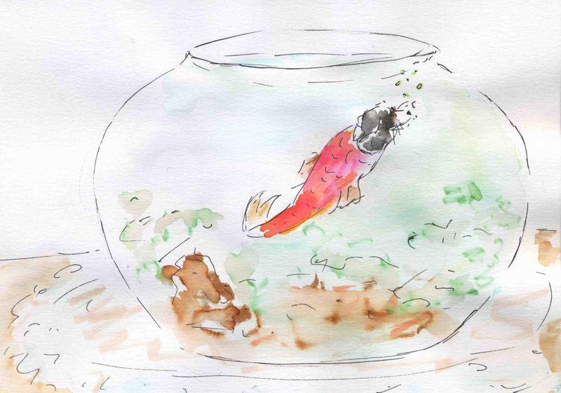 95)poisson dans eau