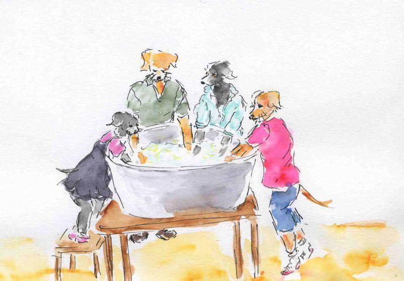 81) laver linge sale