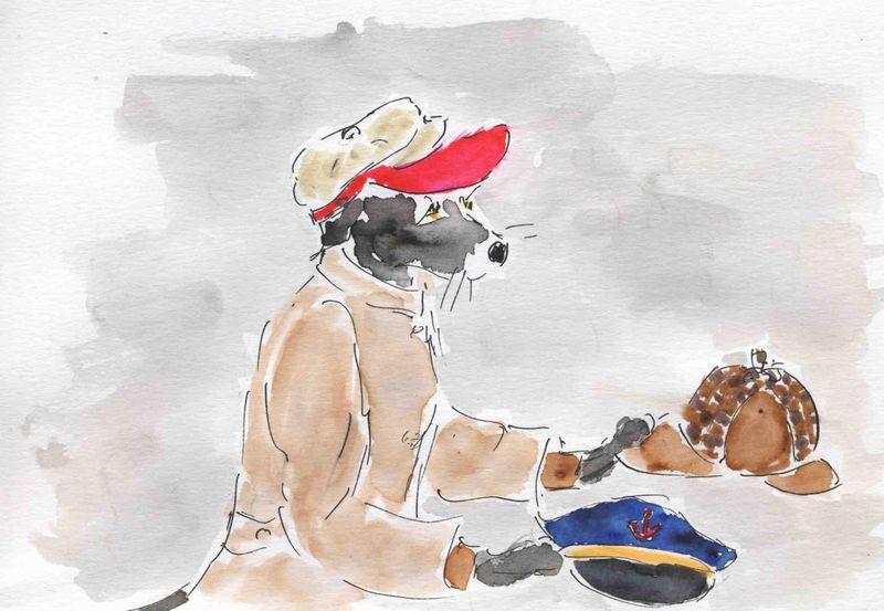 219) porter + casquettes