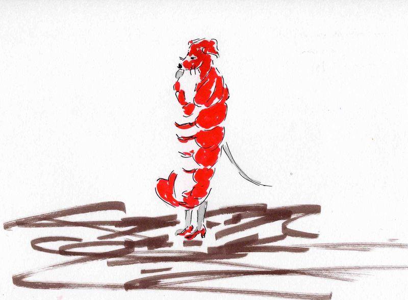 34)rouge comme écrevisse