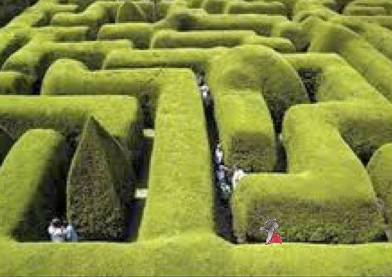 244) Labyrinthe