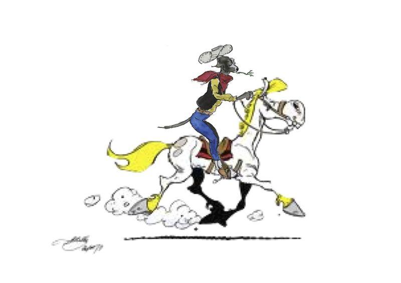 289) Cavalier seul jpeg