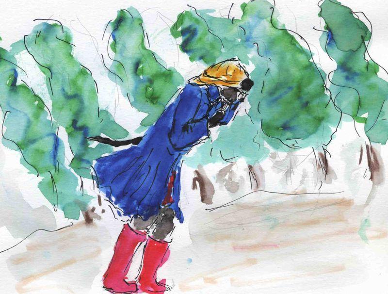 96) c'est du vent