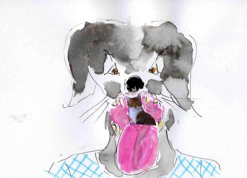 62) chat dans gorge
