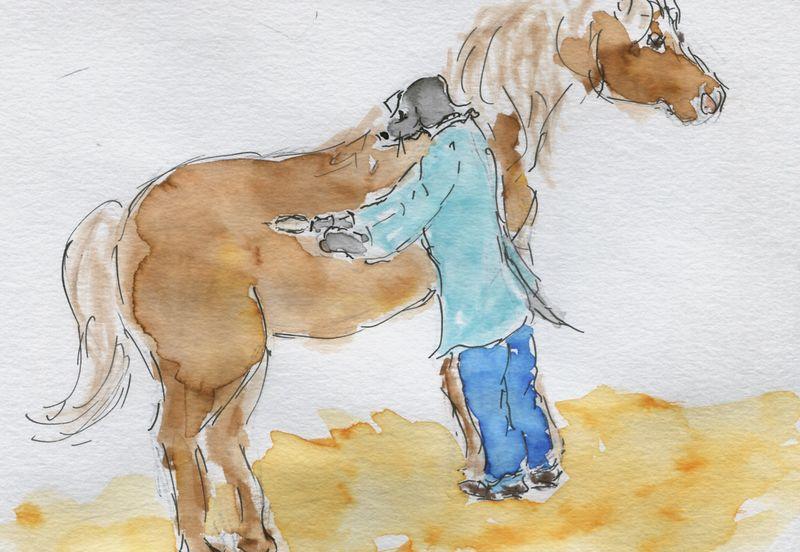 293) Remède de cheval