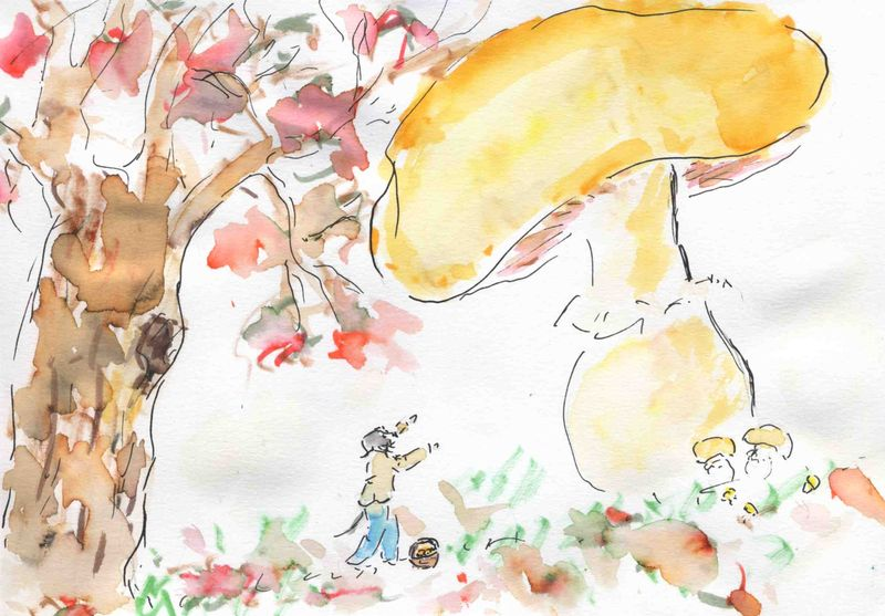 182) Pousser comme champignon