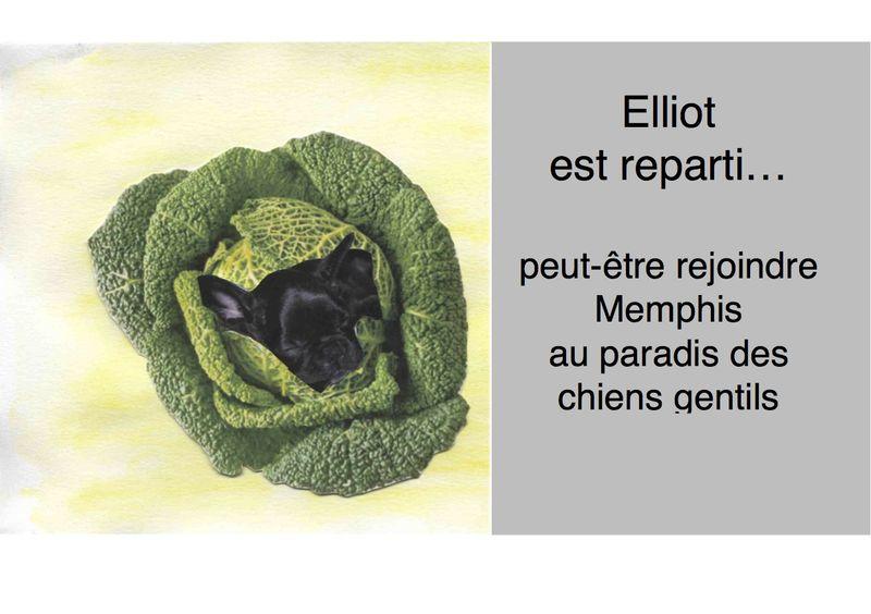 Elliott oaradis.pages