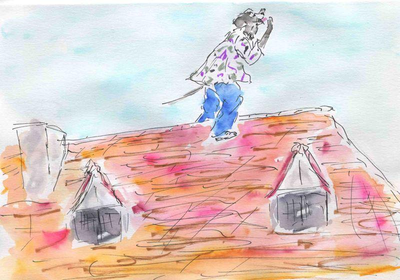 62) crier sur les toits ns
