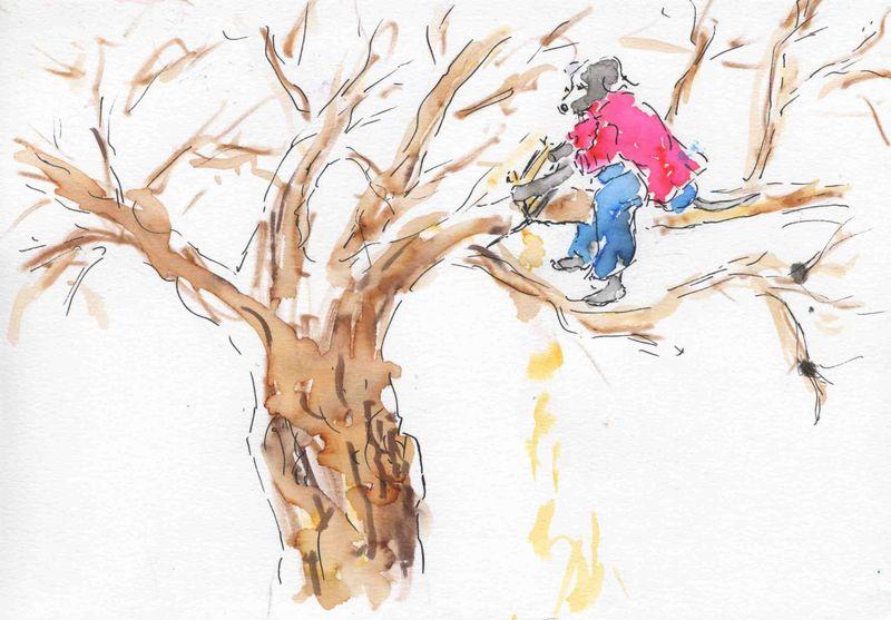 201) scier branche