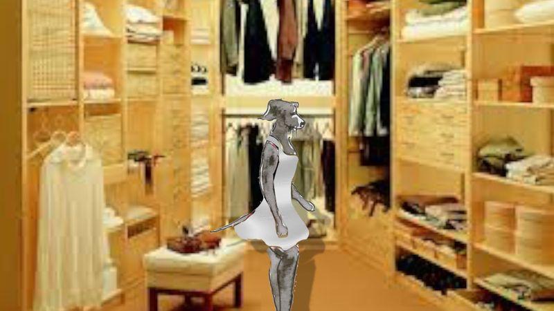501)Changer avis comme de chemise