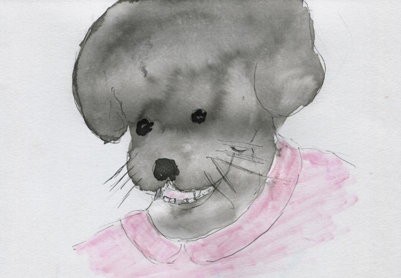 553) êter brèchje-dent