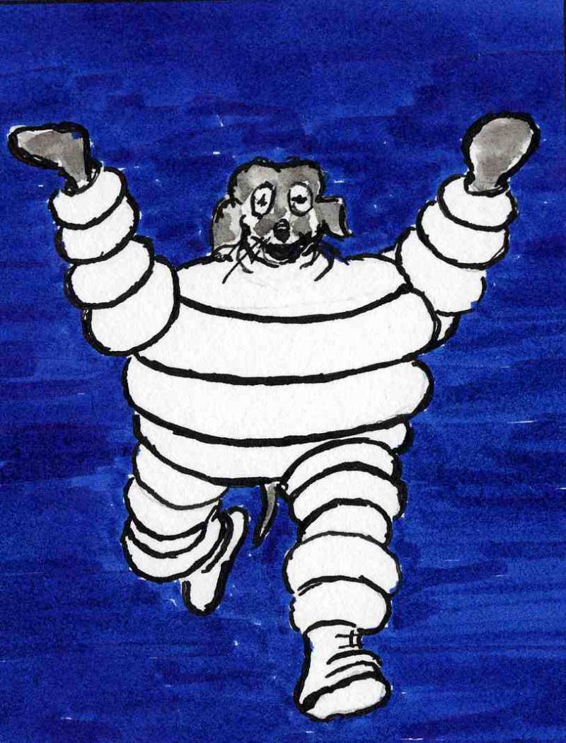 62)Michelin