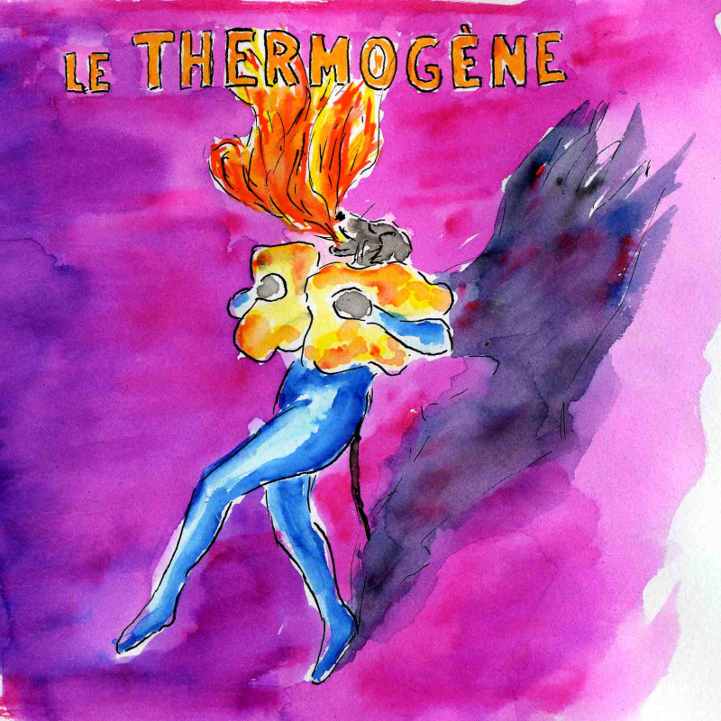 54)thermogéne