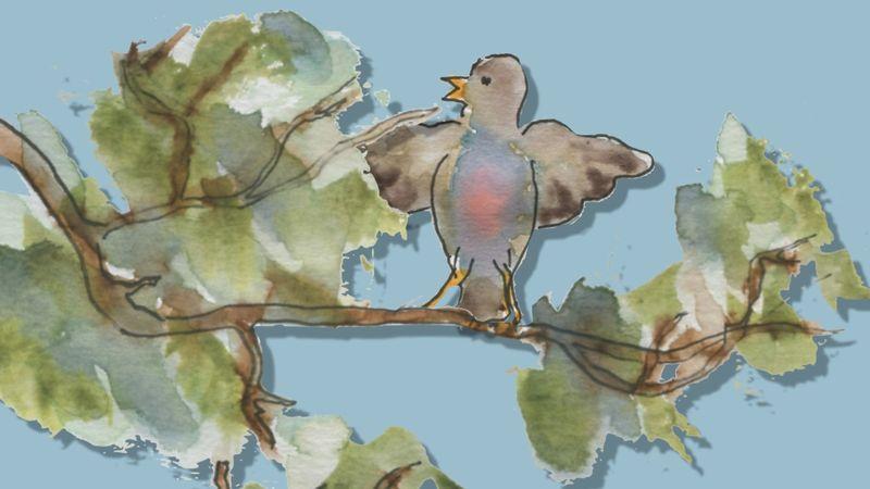 452) Comme oiseau sur la branche