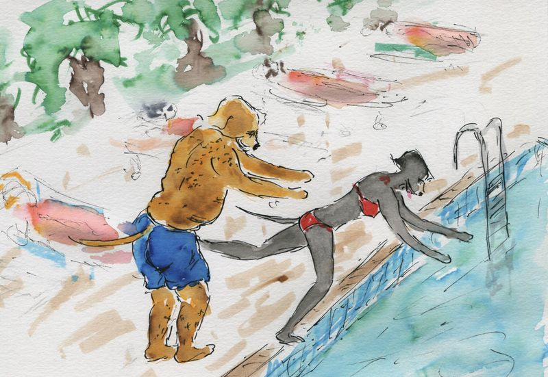 507) Envoyer au bain