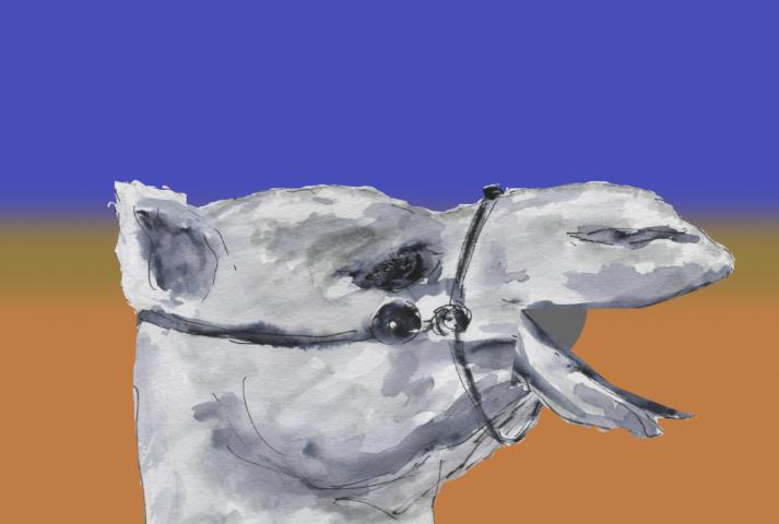 592) Crier dans le désert