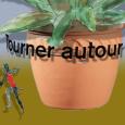 605) Tourner autour du pot