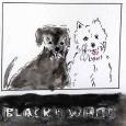 31a)Black