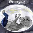 51)wrangler