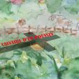800) Le calvaire d'un poussin Pâques 2020